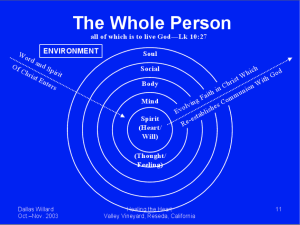 dallaswillard_person_model