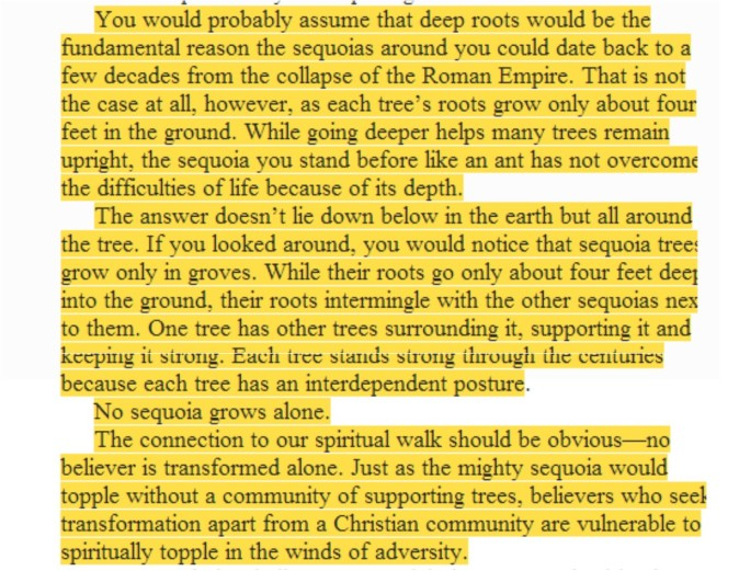 GROWING IN CHRIST IS LIKE A GREAT SEQUOIA................